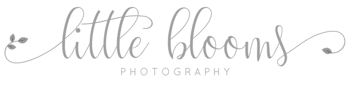 Little Blooms Photography LLC - Kennett Square | West Chester | Chadds Ford | Glen Mills | Downingtown | Chester County Newborn Baby Photographer